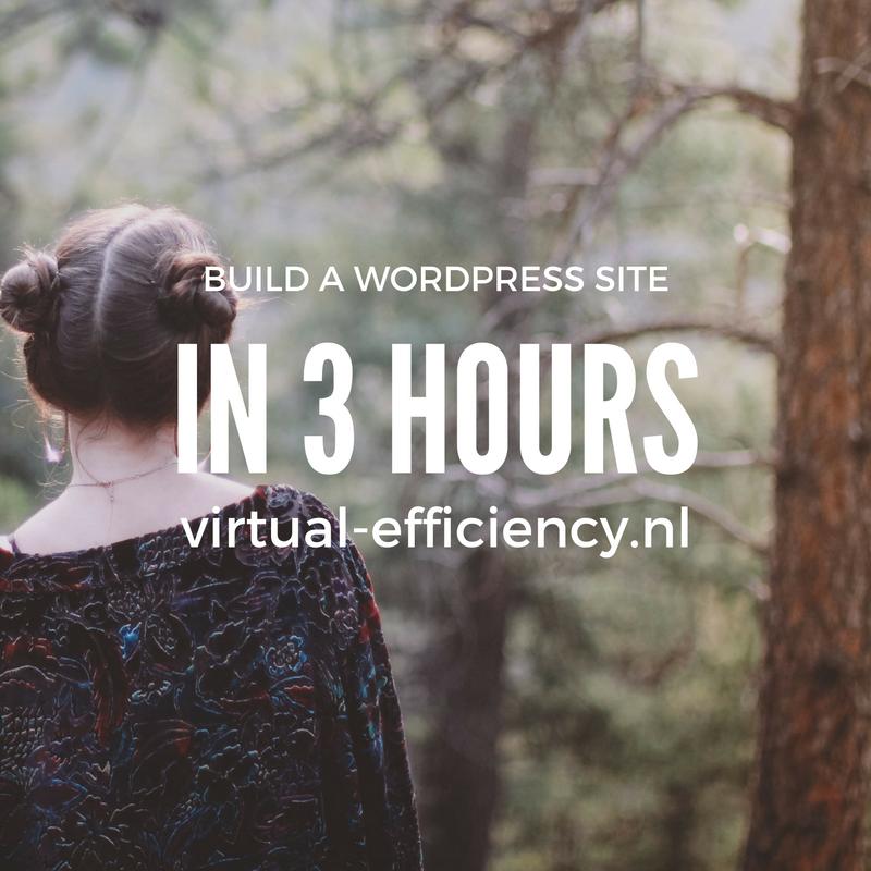 build-a-wordpress-site-in-3-hours-danielle-molenaar-virtual-assistant