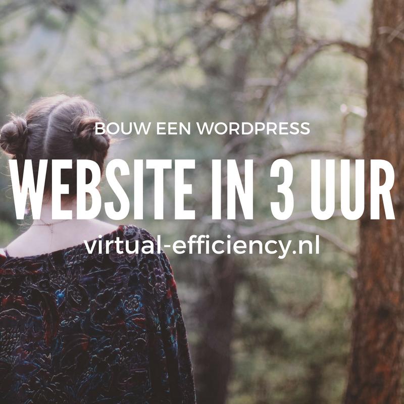 wordpress-website-maken-2016-danielle-molenaar-virtual-assistant