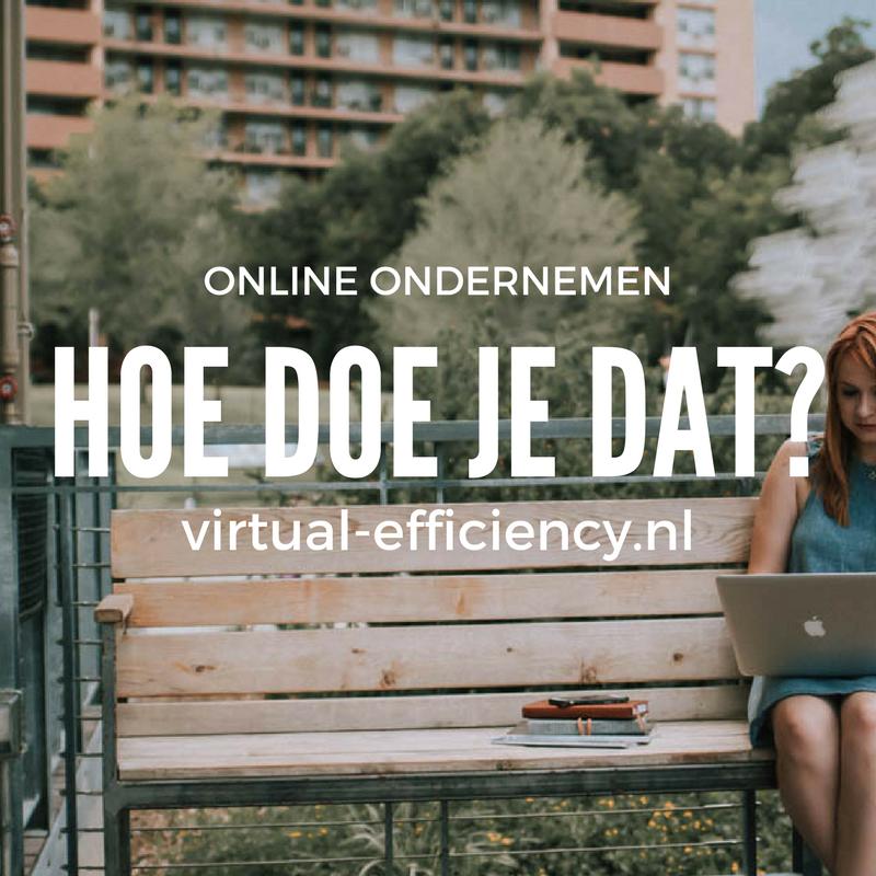 online-ondernemen-hoe-doe-je-dat-danielle-molenaar