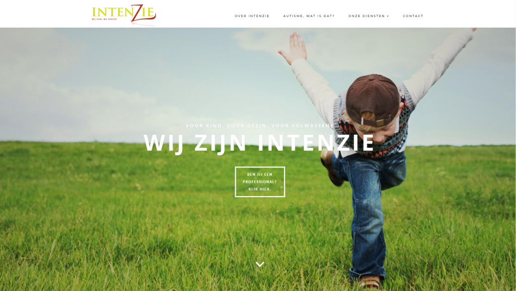 intenzie website