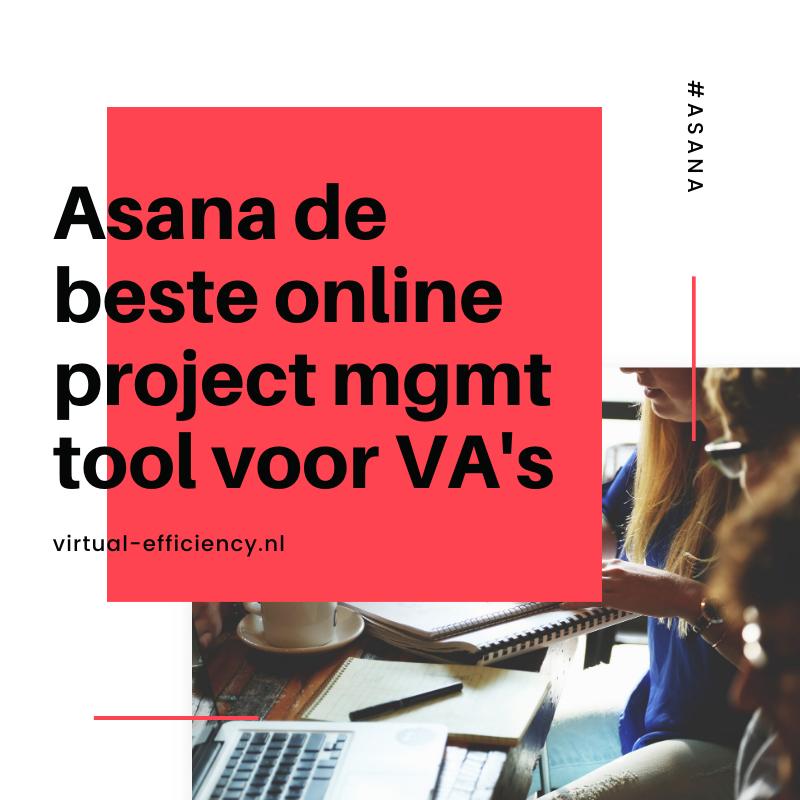 asana project management tool voor virtual assistants