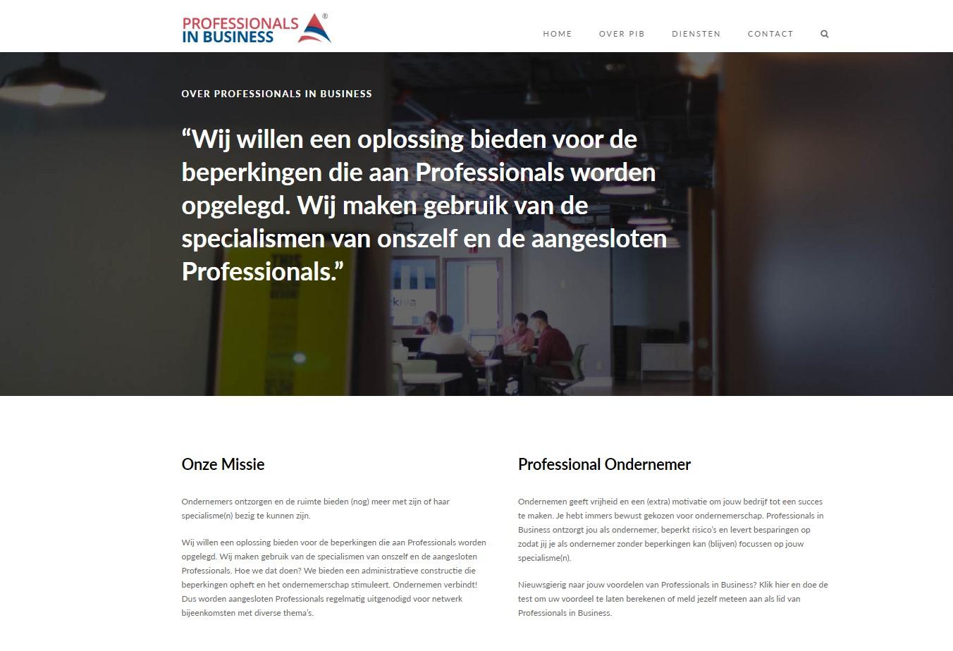 professionals in business website